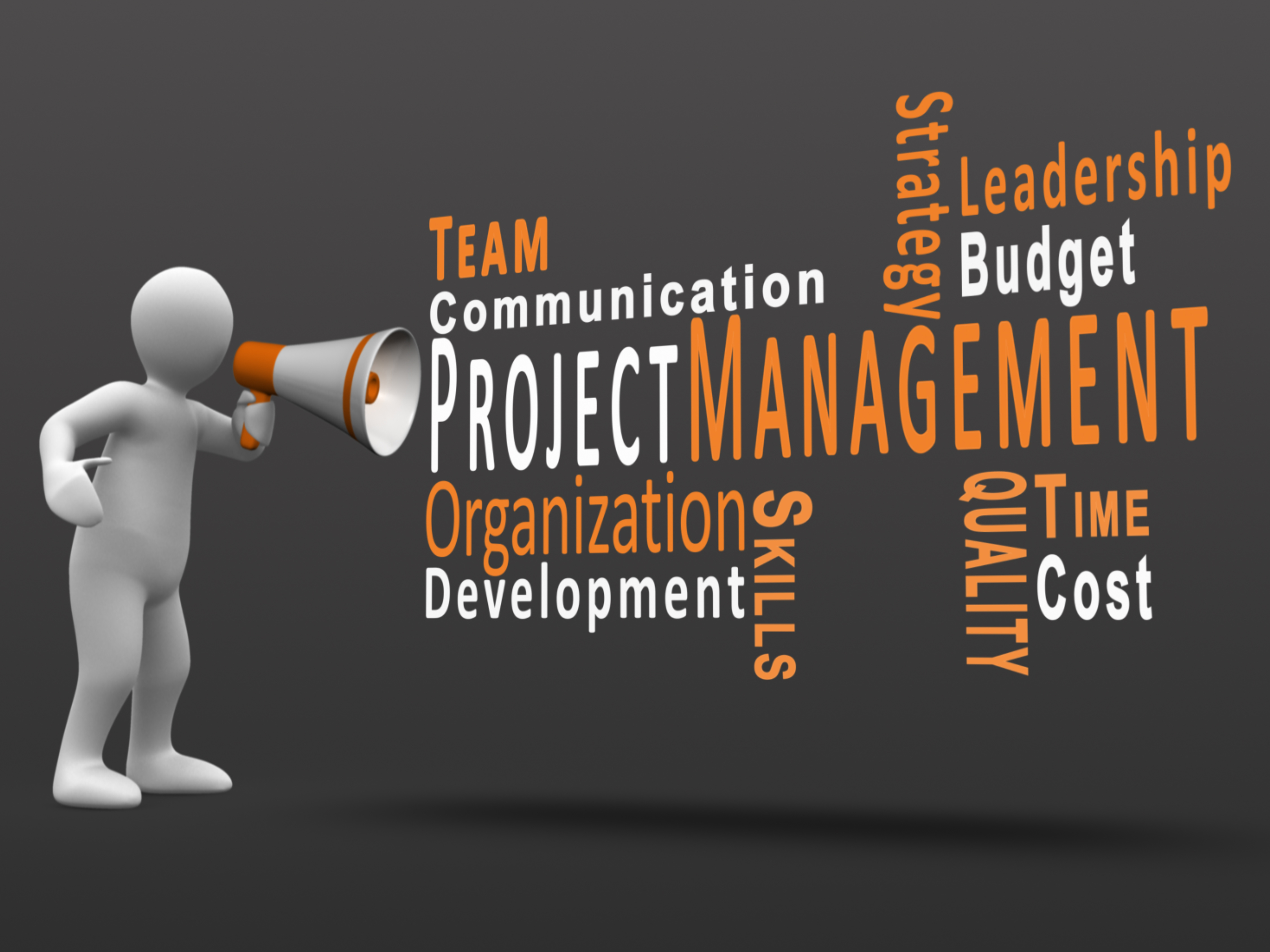 project scope management is important aspect information technology essay Project management quotes on the importance of project management operations keeps the lights on information technology company.