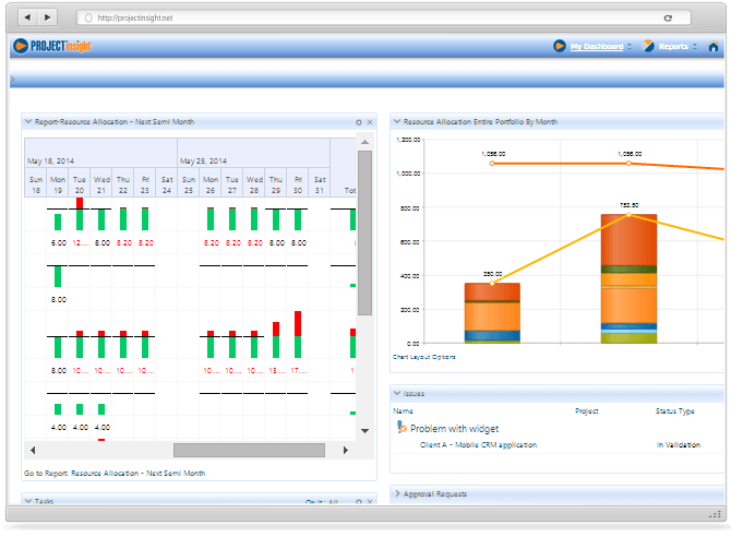 Project Manager Dashboard Reports